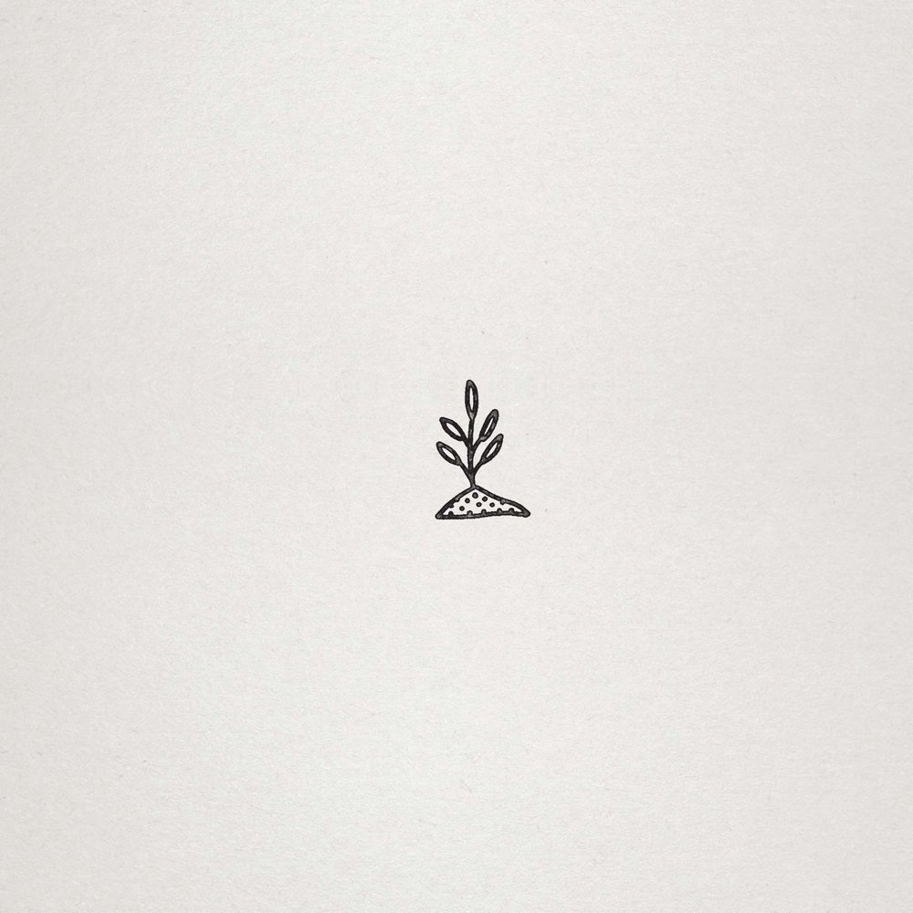 lilplant.jpg