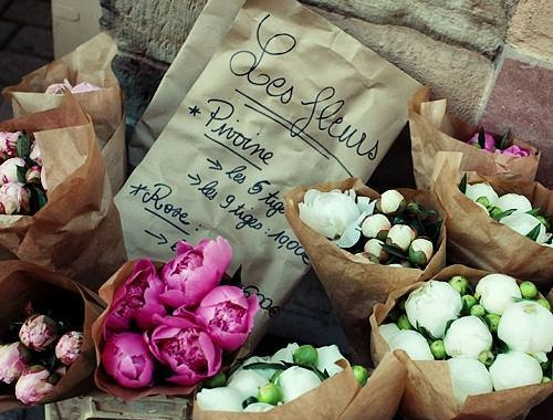 Pivoine (peony) season at the Saturday market in Beaune, Burgundy, France.
