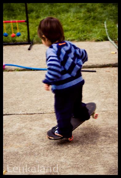 Ian Skateboards