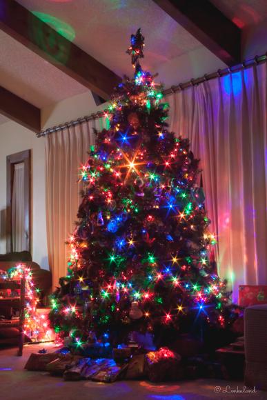 wpid10017-Christmas2013-21.jpg