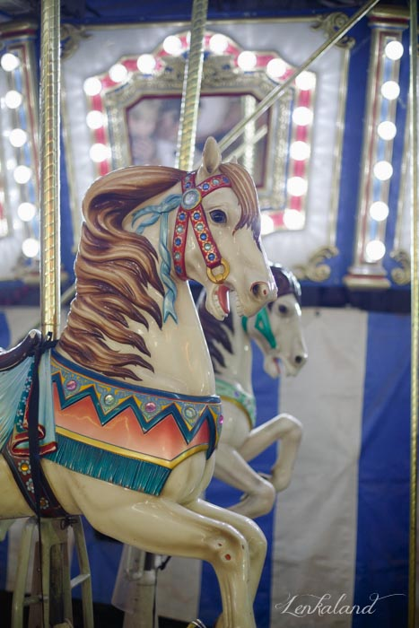 Galloping horses on the carousel at the Nevada County Fair