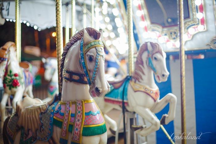 Carousel horses at the Nevada County Fair