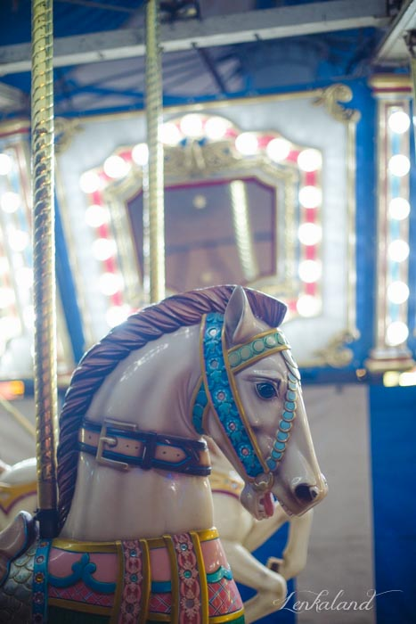 Carousel horse at the fair