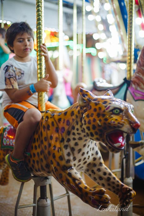 Ian rides a leopard on the carousel at the fair