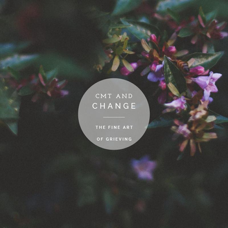 cmtandchange.jpg