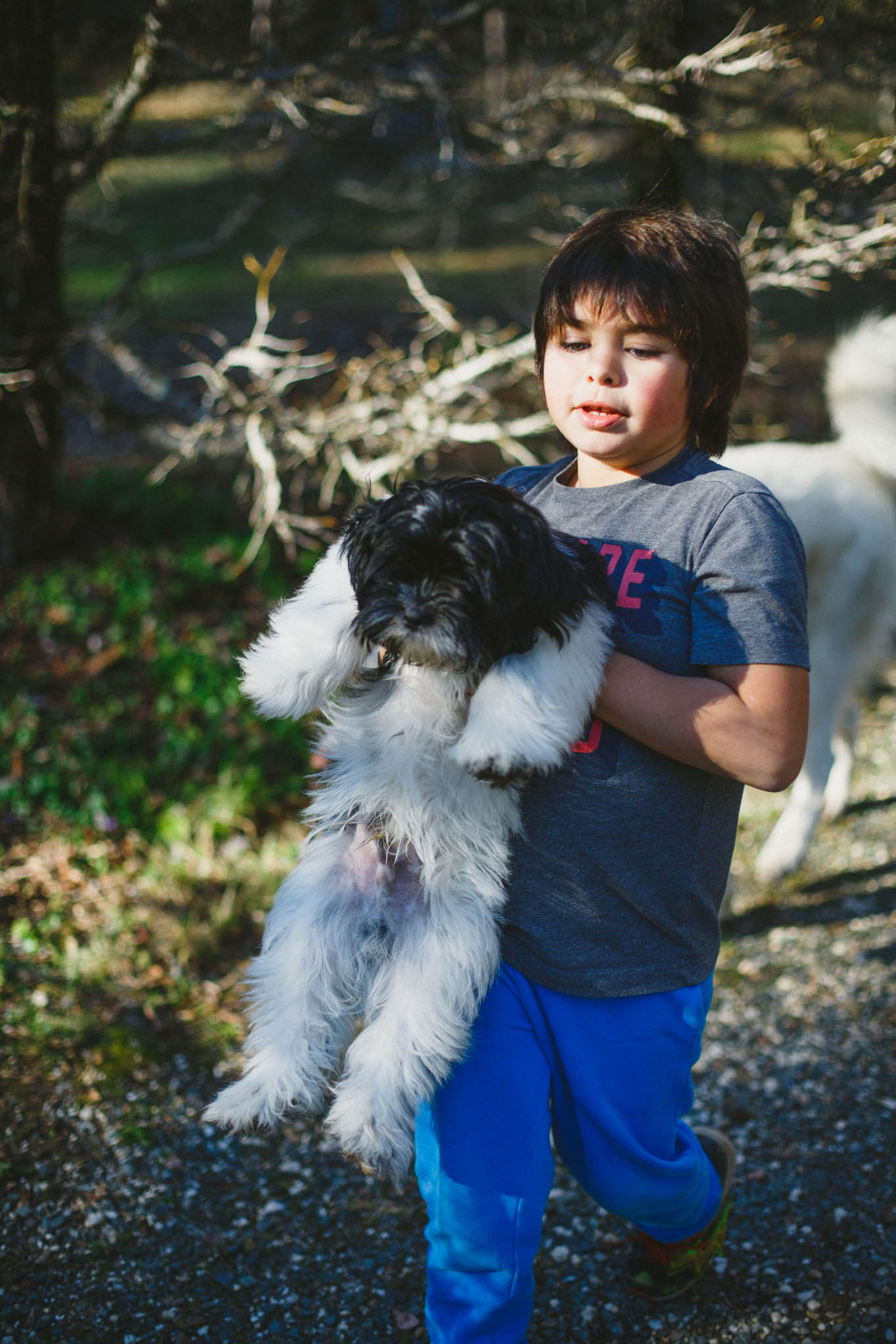 Wild children photography with a Lhasa Apso in the woods of Northern California