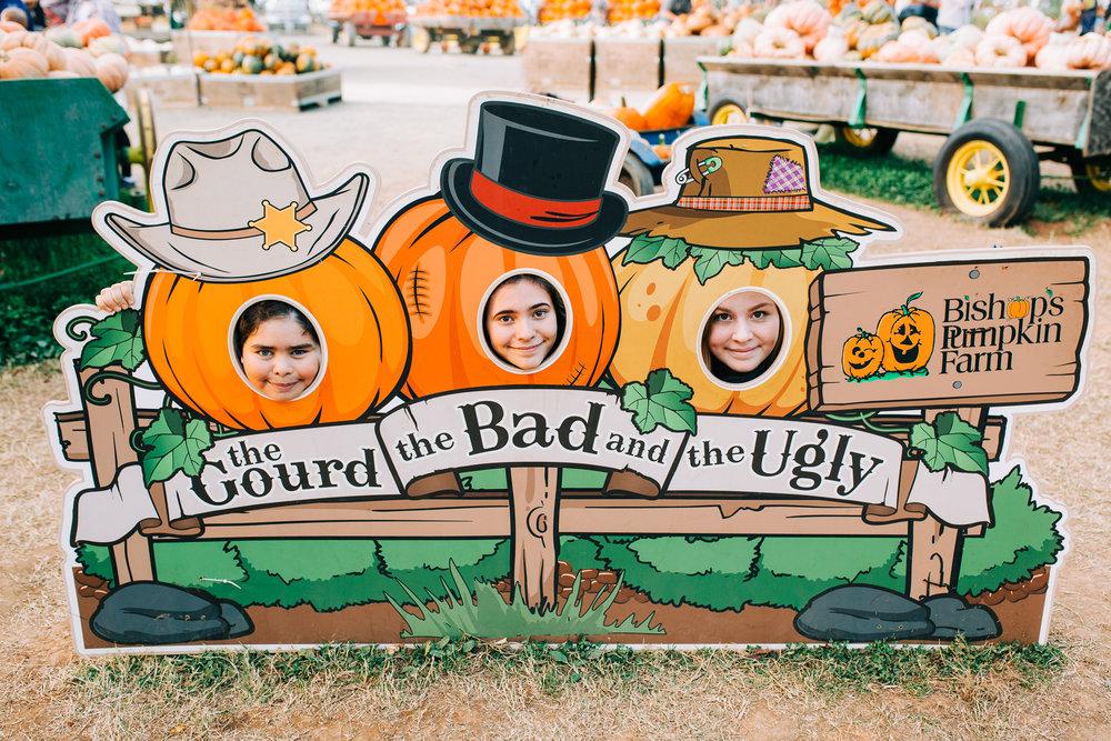 Lenkaland Photography at Bishop's Pumpkin Farm