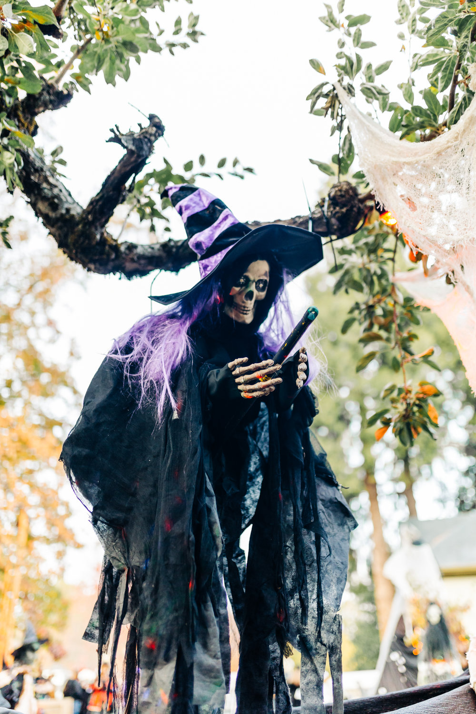 Nevada City Halloween | Lenkaland Photography