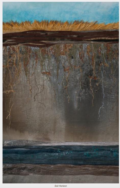 Artist Deborah Foutch, Soil Horizon