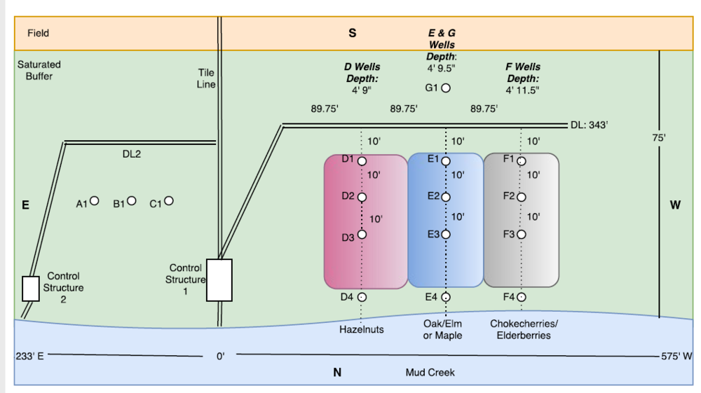 Figure 2: A map of the buffer (not to scale). Includes the approximate locations of the control structures, distribution lines, sampling wells, and vegetation transects. Types of vegetation within the transects are subject to change.