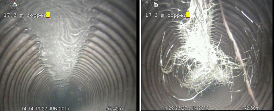 Figure 1.  Camera shots from inside of the distribution line show root growth into the sub-surface distribution line (DL). After the new grasses over the DL have become established, cameras will be sent through once again to determine which seed mix creates the least potential for DL blockage.