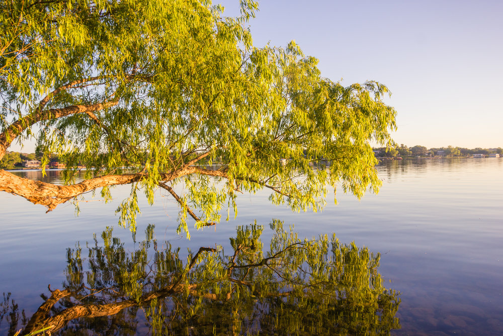 1705_Inks-Lake-13.jpg