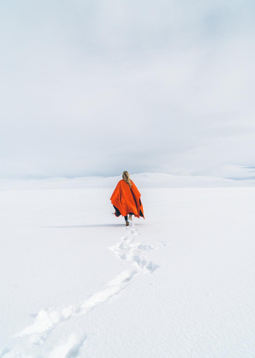 1803_Iceland-51.jpg