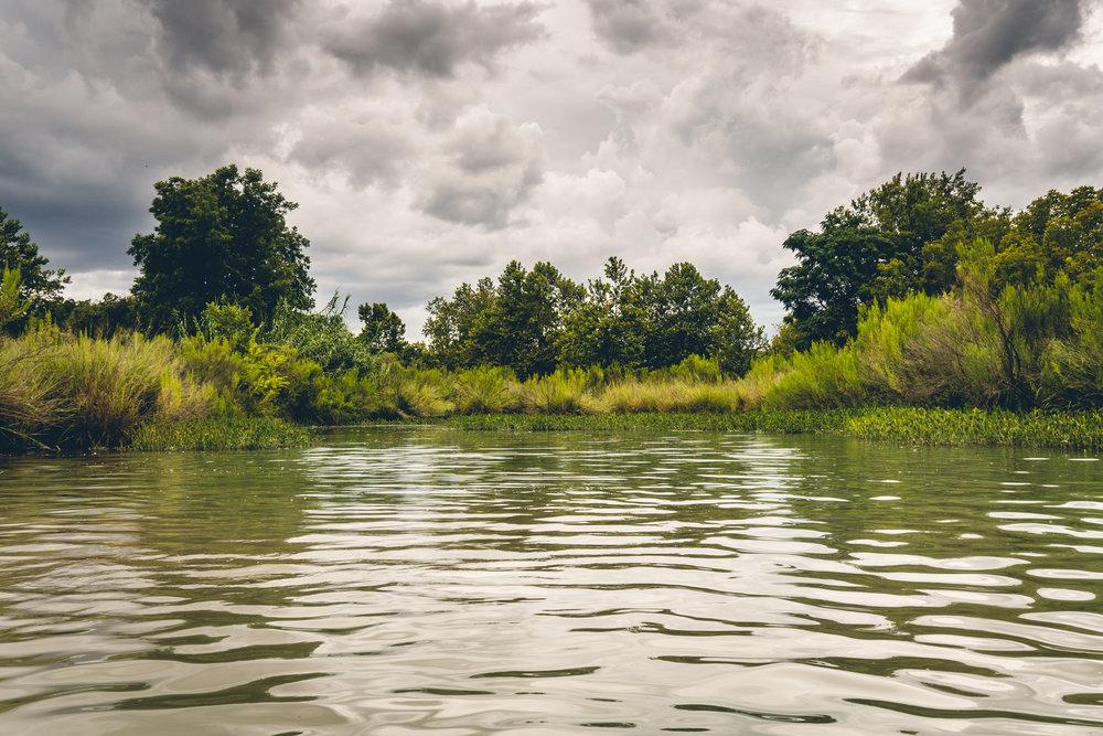 1808_Illano-River-State-Park-19.jpg