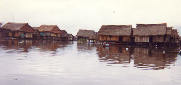 Typical Homes that the indigenous people of Iquitos live in.