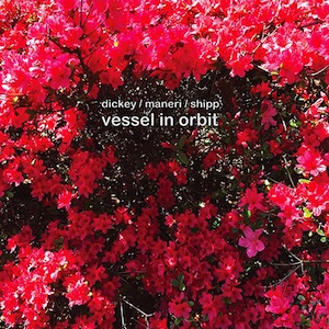 dickey-maneri-shipp-vessels-in-orbit