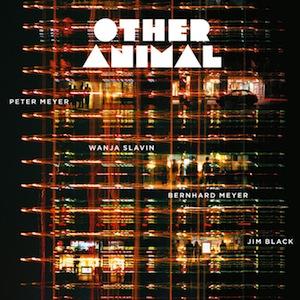 other-animal.jpg