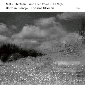 mats-eilertsen-then-comes-night.jpg