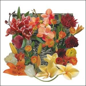 mike-baggetta-wall-flowers.jpg