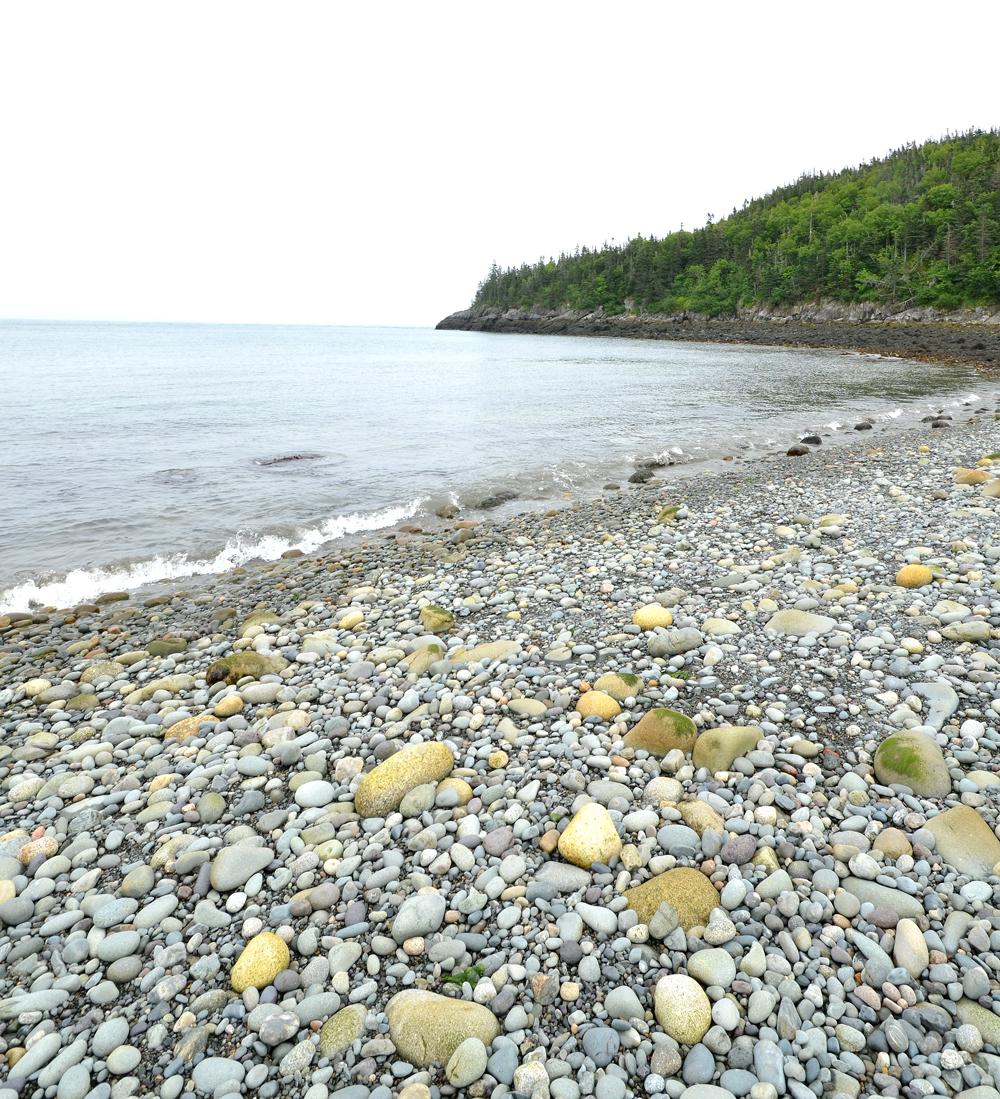 Boot Cove shore
