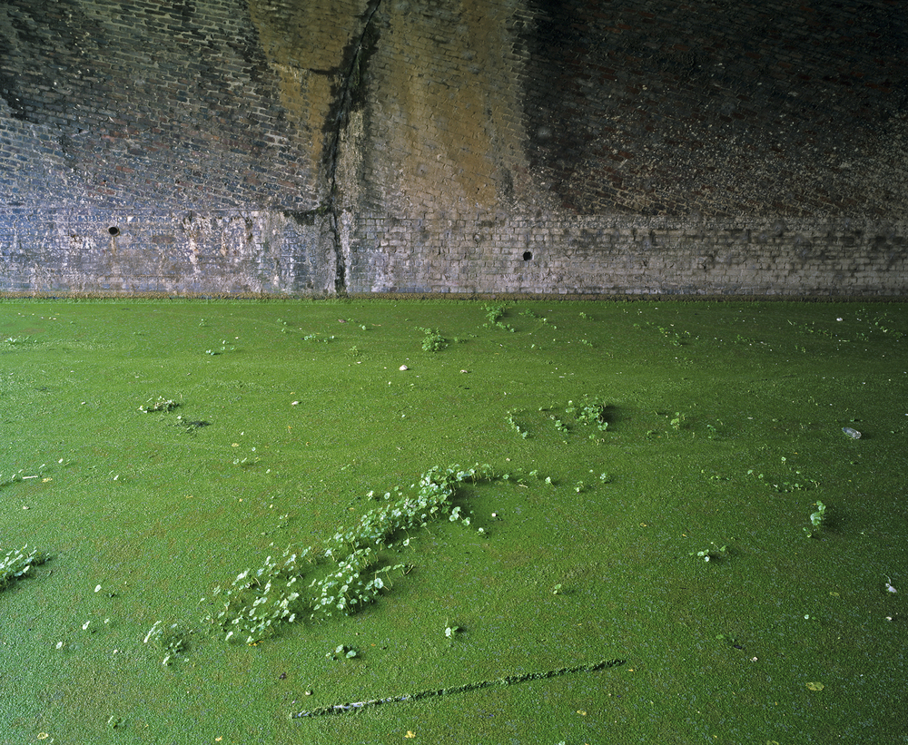 Algae Pool, Lea River (2005)