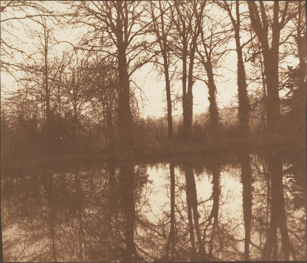 William Henry Fox Talbot,  Trees and Reflections  (ca. 1843)