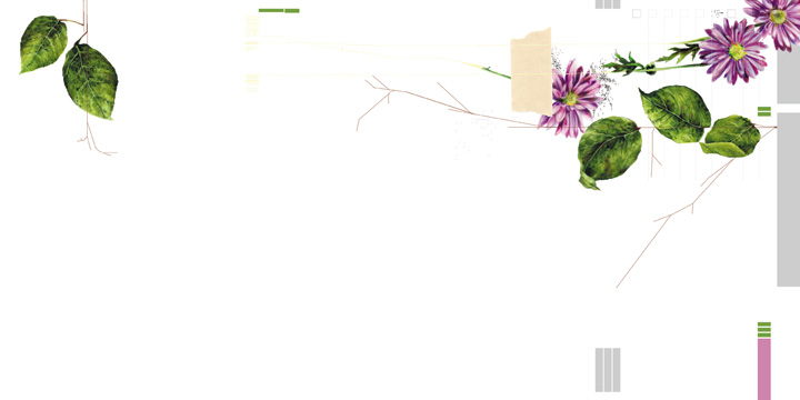 DIK_flowers_page1.jpg