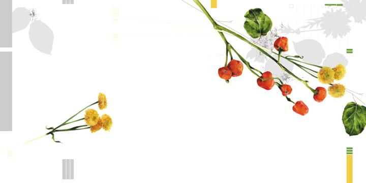 DIK_flowers_page2.jpg