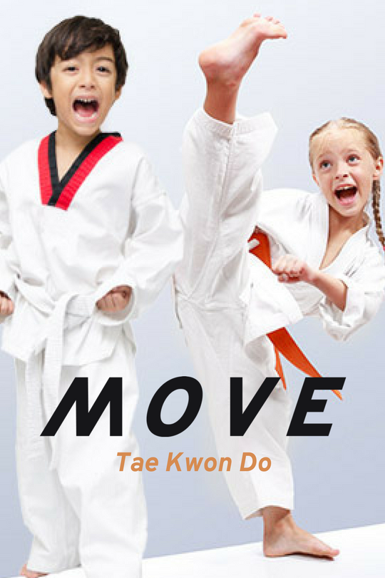 Taekwondo V2.png