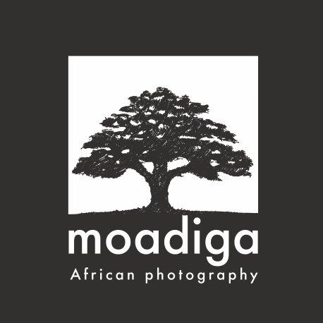 moadiga-photographie-africaine-logo.jpg