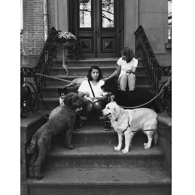friends | brooklyn heights
