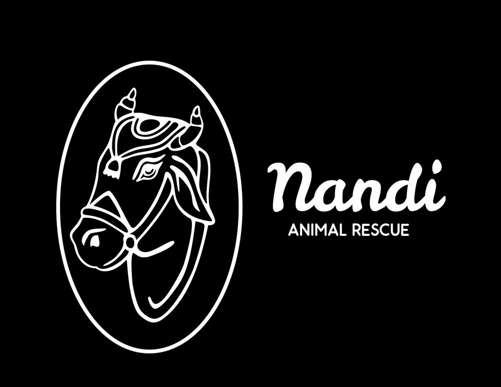 NandiLogoWebsite_Artboard 3.png