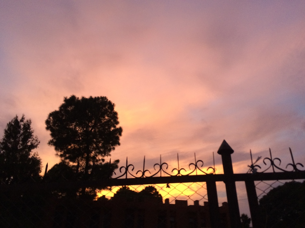 Blurry sunset picture taken while walking to Thamel