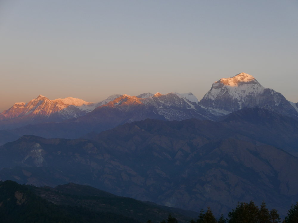 The morning sun touches Dhaulagiri, the 7th tallest mountain in the world, from Poon Hill