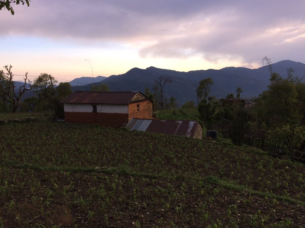 Hills in Kaski District, near a homestay