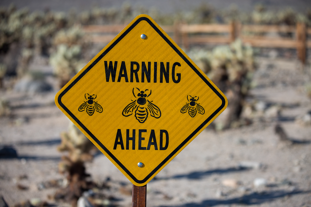 warning bees ahead sign