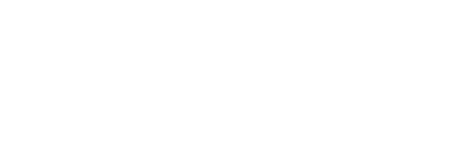 Anne Napolitano-Small Business Consulting Services