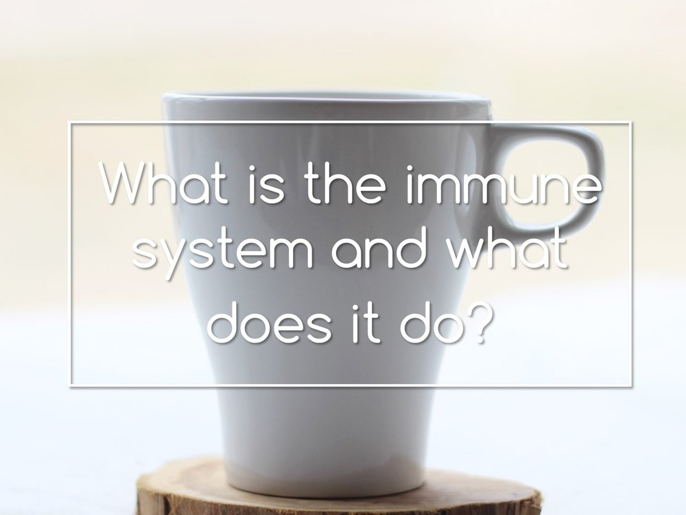 what is the immune system and what does it do.pub.jpg