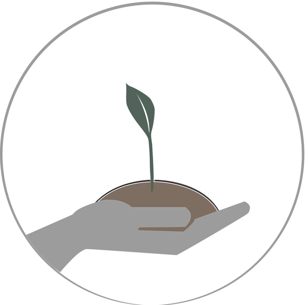 leaf logic tea values stewardship