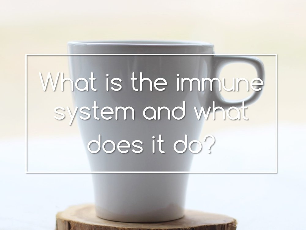 what is the immune system and what does it do