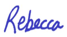 Rebecca Llewellyn WCDP Chair