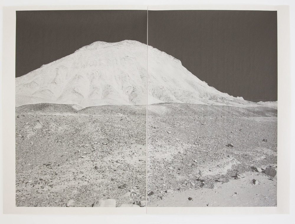 DV_8335 , unique diptych pigment print on newsprint, 36 x 24 inches, 2015