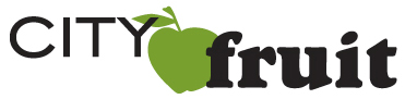 CF-logo-color-webonly.jpg