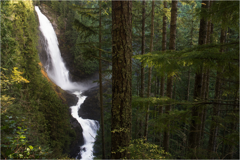 """""""Wallace Falls,"""" by Andrea Moore . Licensed under https://creativecommons.org/licenses/by-nc-nd/2.0/."""