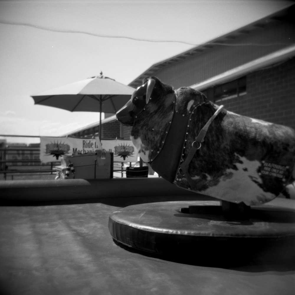 """ Mechanical Bull ,"" by Travis Gray. Licensed under Attribution-NonCommercial 2.0 Generic (CC BY-NC 2.0)."