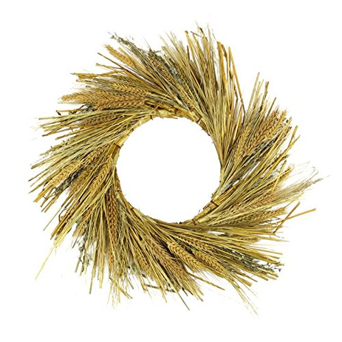 "Northlight Unlit Autumn Harvest Wheat Grass and Grapevine Thanksgiving Fall Wreath, 22"" - $32.72"
