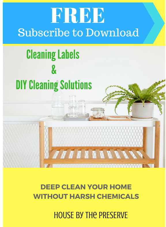 Cleaning Labels & DIY Cleaning Solutions FREE Printables - House by the Preserve.png