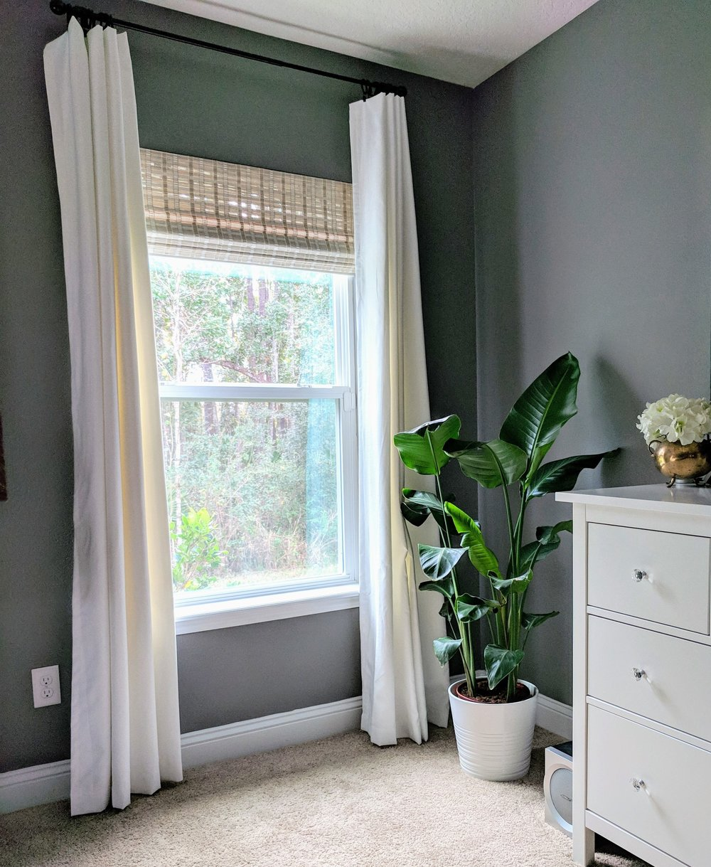 adding plants to your decor