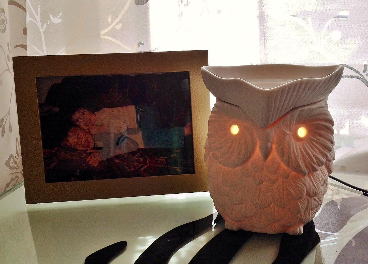 Owl Scentsy