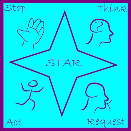 THE STAR PROCESS